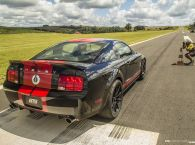Shelby Mustang GT500 - Standing